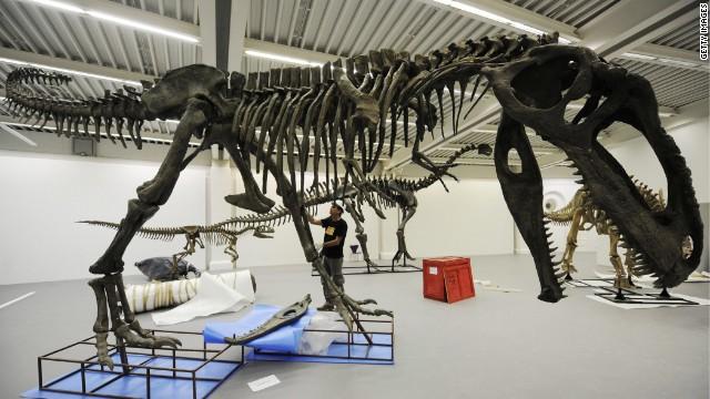 Fernando Novas, un argentino tras las huellas de los dinosaurios milenarios