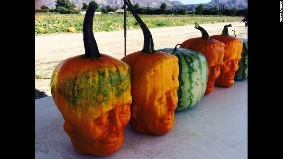 "FILLMORE, CA: Tony Dighera, owner of Cinagro Farms, created what he calls ""Pumpkinstein."" After four years of trial and error, the pumpkins that are grown within molds of Frankenstein faces are on sale online and at stores for Halloween. In addition to 'Pumpkinsteins', Tony Dighera also creates uniquely shaped watermelons. <a href='http://edition.cnn.com/2014/10/29/us/pumpkinstein-scary-pumpkins/index.html?iref=allsearch'>FULL STORY AT CNN.COM.</a> Photo by CNN's Michael Cary."