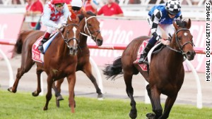 Protectionist wins Melbourne Cup