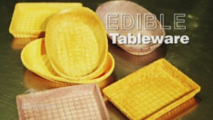 Edible tableware takes off in Japan
