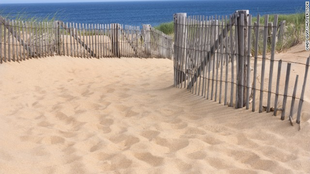 The light, the dunes, the sea air: All of the beauty of Provincetown and its surrounding landscape have captured the attention of writers, poets and artists for over a century.