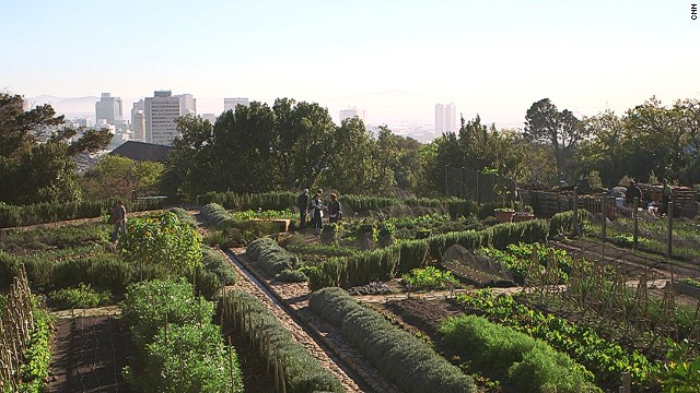In the last few years, Cape Town has witnessed the proliferation of hundreds of community gardens and urban farms. Abalimi is one organization that has worked to link the city's new micro-farmers with the types of middle-earners eager to fill their cupboards with local, organic produce.