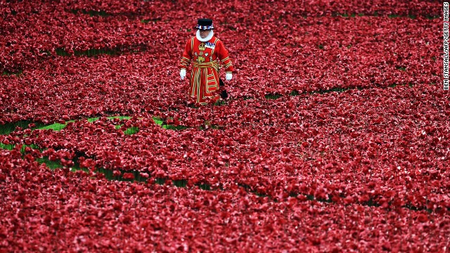 A Yeoman Warder stands amongst the ceramic poppies at the Tower of London's 'Blood Swept Lands and Seas of Red' poppy installation in central London on October 16, 2014.