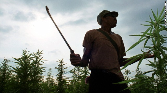 Marijuana is illegal in Jamaica, but the government is moving to decriminalize its use and develop a regulated industry.