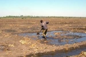Abordando el cambio climático