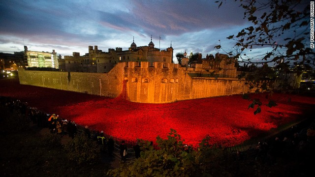 NOVEMBER 11 - LONDON, ENGLAND: The ceramic poppy art installation by artist Paul Cummins and theater designer Tom Piper, entitled 'Blood Swept Lands and Seas of Red,' is seen lit up before sunrise in the dry moat of the Tower of London. The finished installation is made up of 888,246 ceramic poppies, with the final poppy placed today, Armistice Day. Each poppy represents a British and Commonwealth military life lost in World War I.