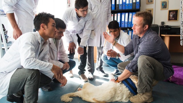 Nowzad Dogs' Kabul-based shelter and clinic are staffed by 14 Afghan nationals.