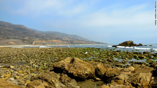 "Be sure to look down as you wander the coast of Malibu, California. Marie Sager says each tidepool holds ""a new discovery of little sea creatures."""
