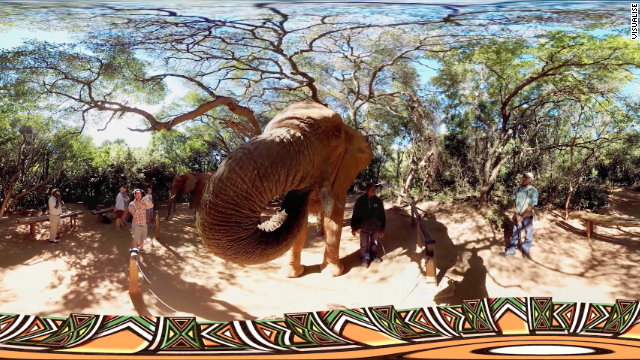 Also from South Africa tour, a chance to meet exotic wildlife without leaving your building.