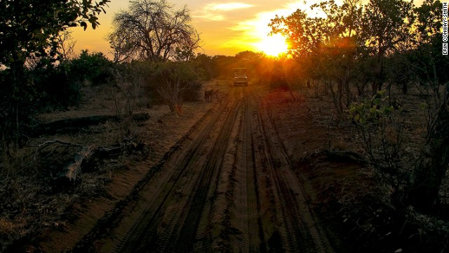 Heading into Chobe National Park at sunrise, a smooth and silent ride on the electric Land Rover.