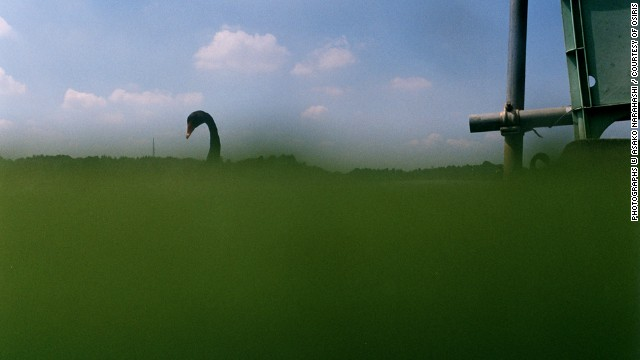 Sembako, 2010