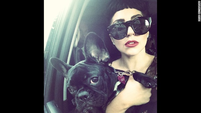 "Pop star Lady Gaga and a four-legged friend take a photo together on Wednesday, July 9. ""It's time to Party in Toronto,"" <a href='http://instagram.com/p/qP-0iXpFK9/?modal=true' target='_blank'>she wrote on Instagram.</a> ""I have had the BEST time here."""