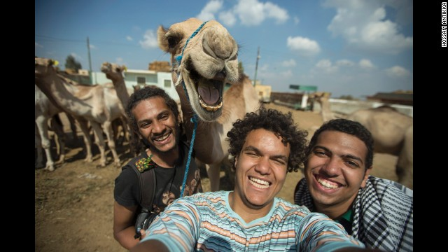 Hossam Antikka and his friends, plus a camel, <a href='https://www.facebook.com/antikkaphotography/photos/a.332499480165108.76782.267039226711134/696733237075062/' target='_blank'>smile for a selfie</a> in Giza, Egypt, on Wednesday, October 1.