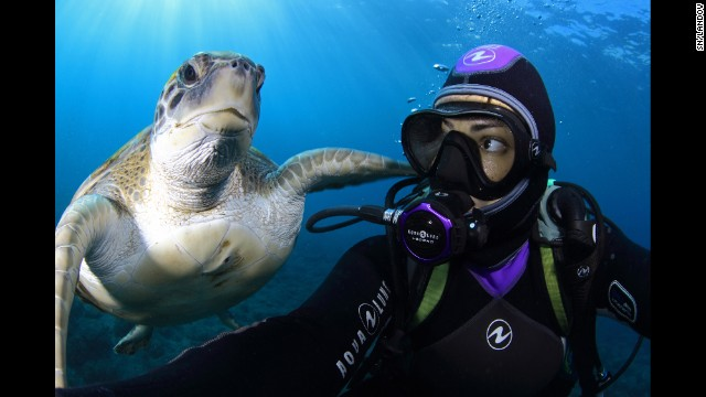 An underwater photographer gets a selfie with a sea turtle Wednesday, September 17, off the coast of Tenerife, one of Spain's Canary Islands.