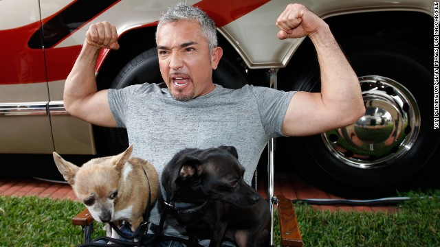 "No one's safe when it comes to Internet death hoaxes, and that includes popular dog trainer Cesar Milan. After erroneous reports that Milan had passed away erupted in early December, <a href='http://instagram.com/p/wJsmhWuXQ3/' target='_blank'>he posted a rebuttal on Instagram</a>, assuring his fans that he was "" safe, happy and healthy."""