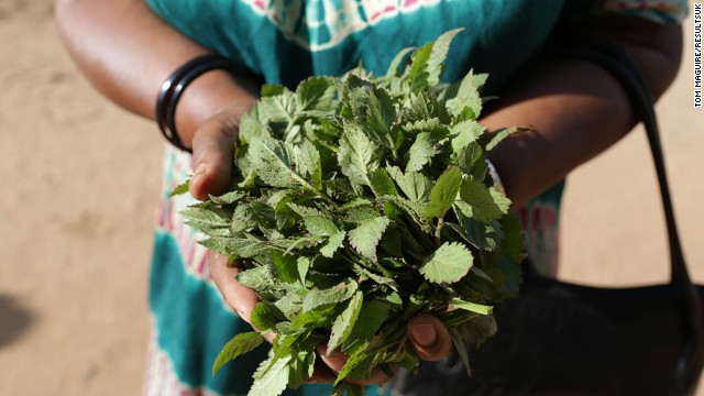 Indigenous plants are high in nutrients and minerals, including iron. Often mistaken for weeds, the women of RESEWO aim to increase awareness of these crops which grow readily across Tanzania.
