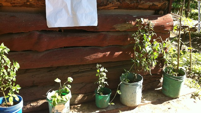 Those without land are encouraged to grow vegetables in their home using pots and cans filled with soil.