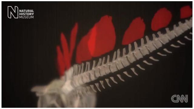 Construyendo un dinosaurio en 30 segundos