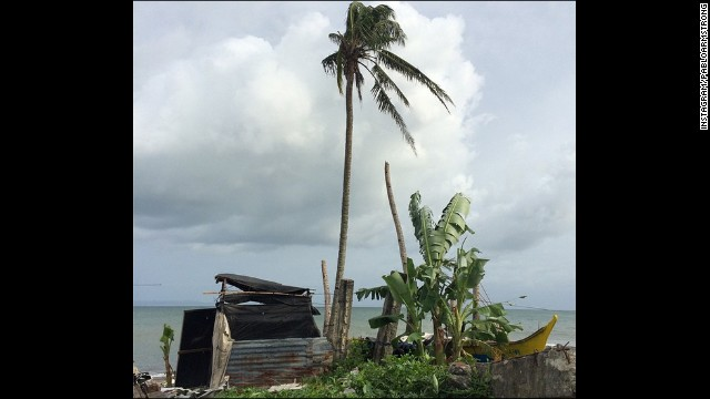 A lone tree in one of the areas of Tacloban hardest hit by Haiyan last year.