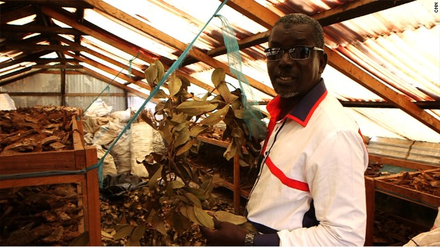 """Once the herbs have been picked, they are put through a drying process. """"This is the place where we dry our leaves in a very hygienic way. There are no flies and there are no insects to tamper with things."""""""