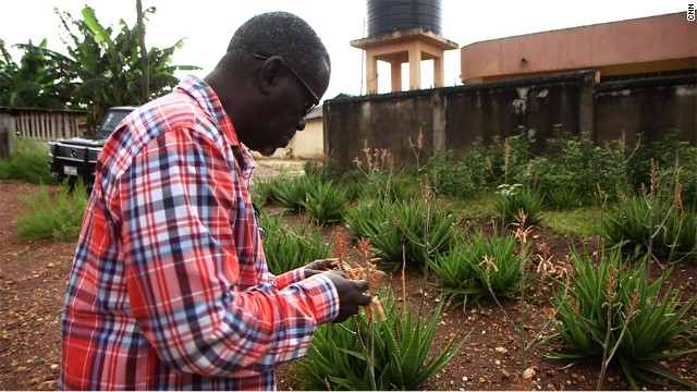Boateng takes great pride in the fact that the business grows all the herbs and plants locally in a garden near the Chocho factory rather than import them.