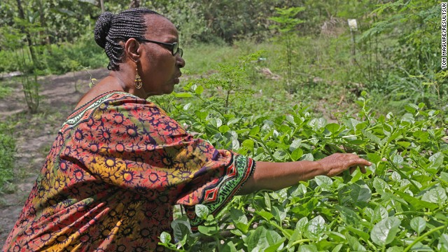 Freda Chale picks fresh greens at the RESEWO headquarters in Dar es Salaam. She has led the organisation since its formation in 2007.