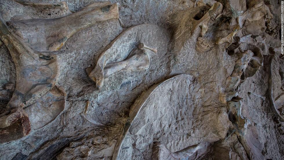 Monumento Nacional de los Dinosaurios, Utah
