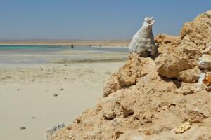 19. Sharm El Luli, Egipto