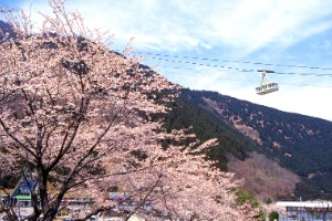 Teleférico Kintetsu Beppu (Ōita)