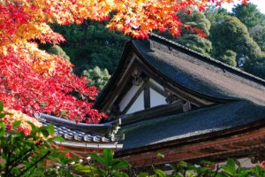 Templo Saimyoji (Prefectura de Shiga)