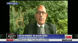 ElBaradei - Egyptian opposition demands