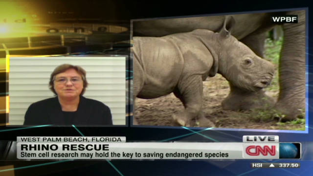2011: Stem cells could save endangered species