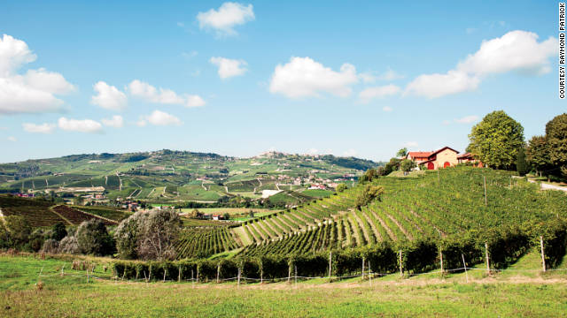 Rolling slopes planted with Nebbiolo grapes at Tenuta Montanello showcase the scenery of Piedmont.