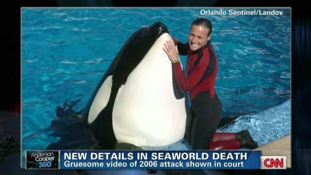 Court views earlier SeaWorld death