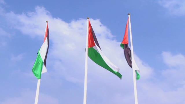 Behind Palestinian U.N. effort