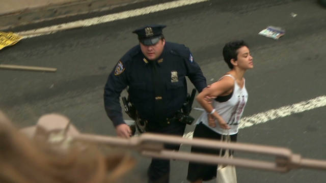 Hundreds arrested in Wall St. protest