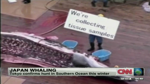 War over whaling in Japan