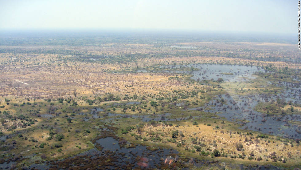 Thousands of tourists go on safari expeditions in Botswana's Okavango Delta every year.