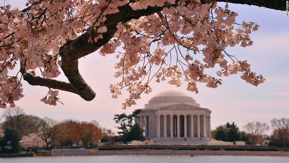 Various types of marble, limestone and granite make up the Jefferson Memorial. From Vermont to Georgia and beyond, the sources of the materials give physical representation to the original states and the expanding union.