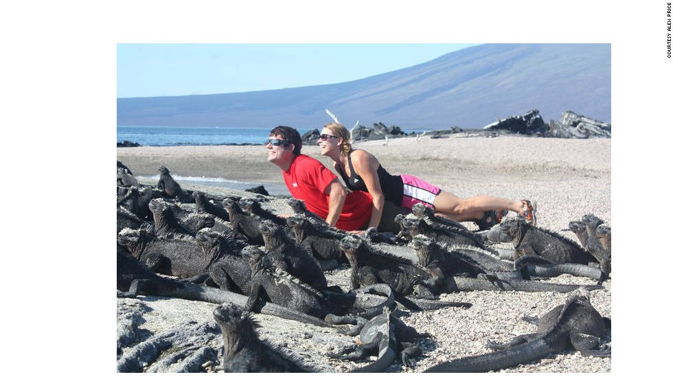 "Alex Price, 29, of Reston, Virginia, went to the Galapagos Islands with his wife for their honeymoon in 2010. Here, they bask in the sun as iguanas do. Iguanas are commonly found on the islands, so much so that some consider them a nuisance. The couple spent roughly half their trip on a boat ""floating around the islands"" and the other portion staying at the Royal Palms Hotel. Price says they made sure to visit the Charles Darwin Research Station on Santa Cruz Island."
