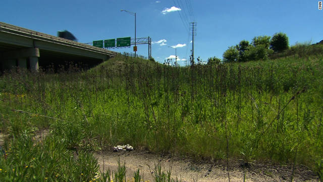 A grassy strip between expressways links two halves of Chicago's 4th Congressional District, held by a Democrat.