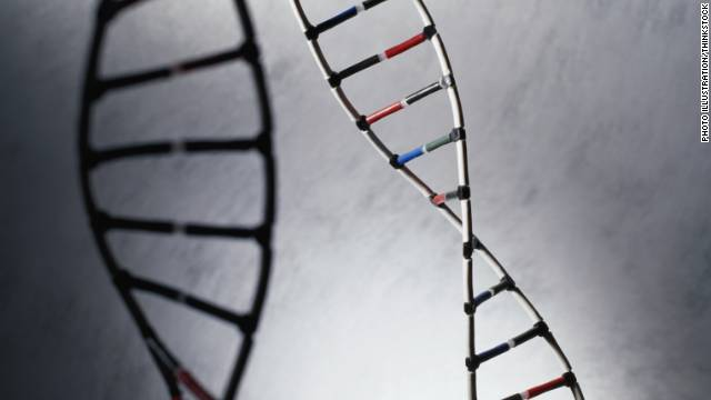 Supreme Court compromise on gene patents