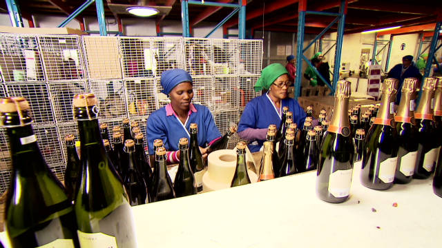 Solar farm for South African wine