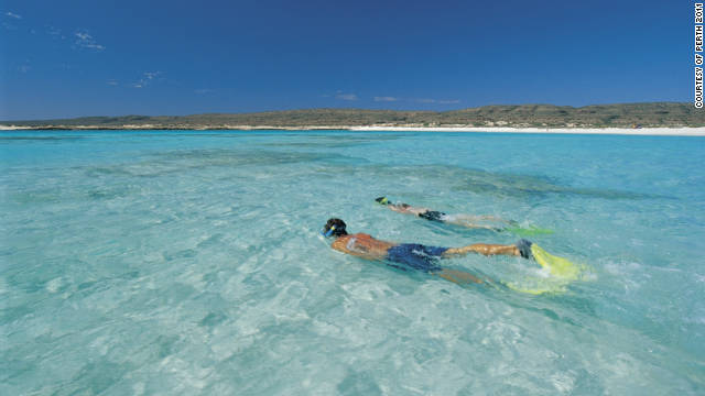 Snorkeling at Ningaloo Reef