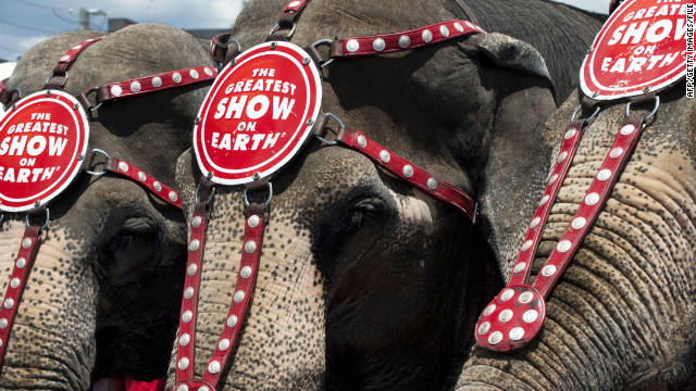 The lawsuit alleged that the Ringling Bros. and Barnum & Bailey Circus systematically abuses and exploits elephants.