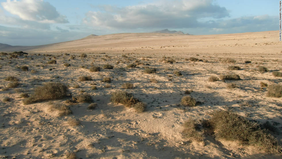 "Markku Rainer Peltonen took this photo of Fuerteventura. He says climate change threatens the island's desert and semi-deserts, and adds: ""Fuerteventura's ecosystem is sensitive because of erosion, too. The island's fast-growing tourism may also leave negative traces with regards to its unique landscape, fauna and flora."""