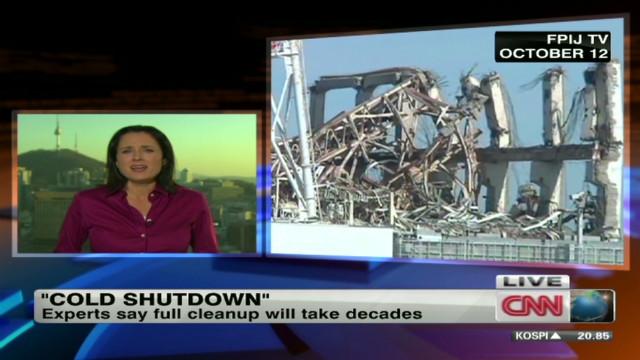 'Cold shutdown' achieved at Fukushima