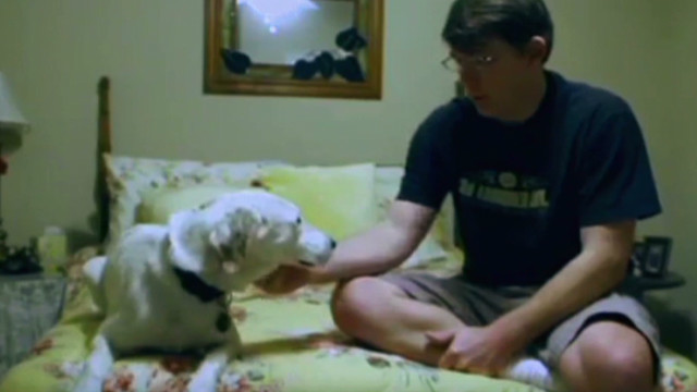 Service dogs help vets with PTSD