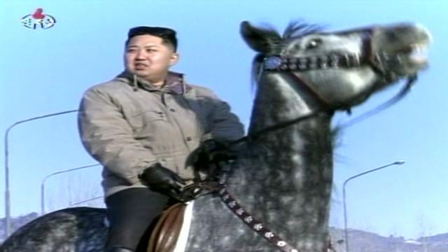 Happy birthday, Kim Jong Un?
