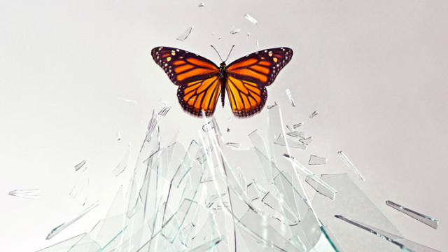 Figuring out what you want in life enables you to break free of any hindrances.